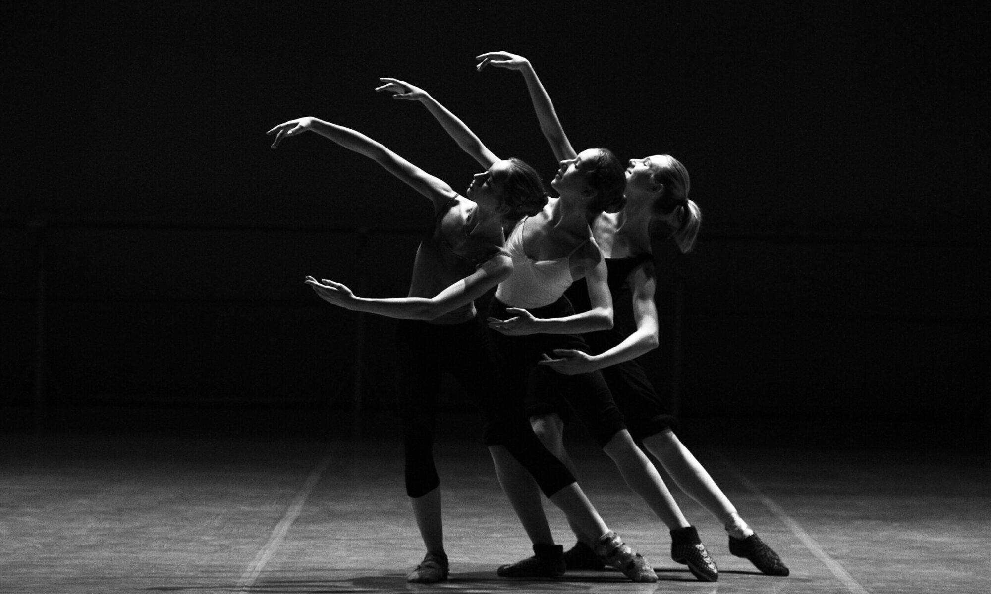 dancecamp.ch